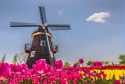LANDING IN NETHERLAND